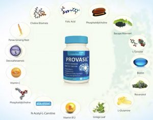 Provasil Review Ingredients