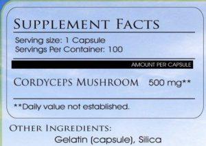 Cordyceps Mushroom Benefits