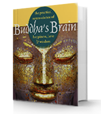 Buddha Brain Book Review