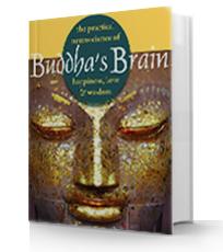 Buddha Brain Book Review