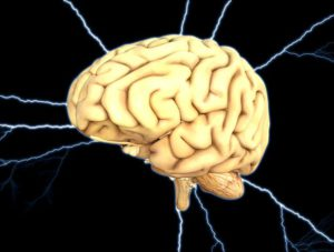 improving the brain