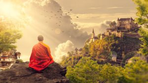 why Buddhism is true book review