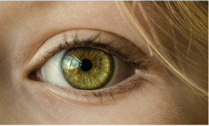 coluracetam for improving vision