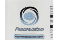 Fasoracetam review