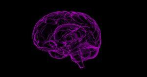 memory improvement benefits
