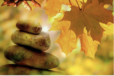 what is bodhi meditation all about