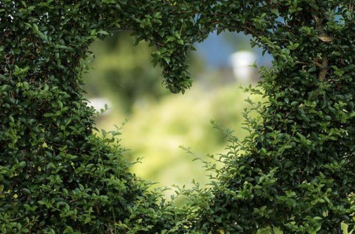 heart benefits of meditation